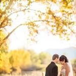 Tara-Pieter-Married-412-2176598410-O