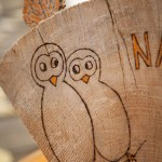 Close up of illustrated owls