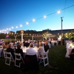 Wedding reception in a vineyard